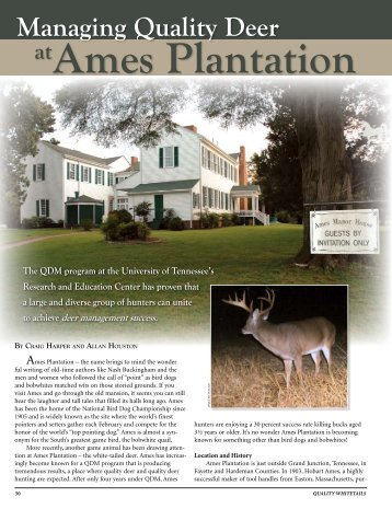 Managing quality deer at Ames Plantation. - Department of Forestry ...