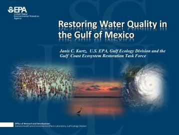 Restoring Water Quality in the Gulf of Mexico - Restore America's ...