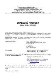 ZNALECKÝ POSUDEK číslo: 6030-2176/2012 - e-aukce