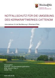 Notfallschutz für die Umgebung des Kernkraftwerkes ... - Aufsichts