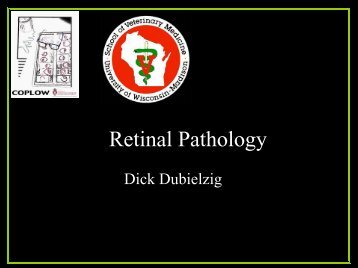 Retinal Pathology