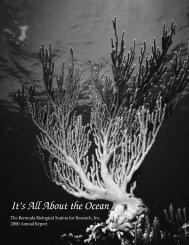BBSR 2000 Annual Report - Bermuda Institute of Ocean Sciences