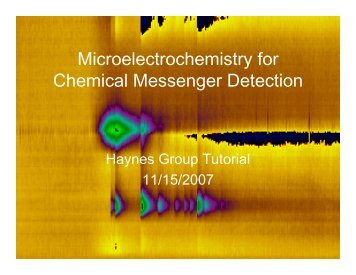 Microelectrochemistry for Chemical Messenger Detection