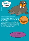 Walrus Facts: - Motlies - Page 2