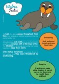 Walrus Facts: - Motlies - Page 3