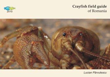 Crayfish field guide of Romania - Crayfish of Romania