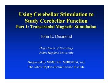 Using Cerebellar Stimulation to Study Cerebellar ... - Neurometrika
