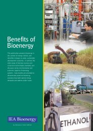 new publication.qxd - Abengoa Bioenergy