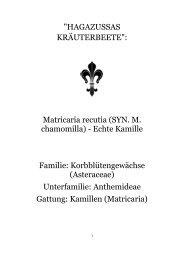 Hagazussas Kräuterbeete.pdf