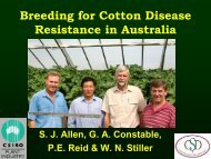 Breeding for Cotton Disease Resistance in Australia