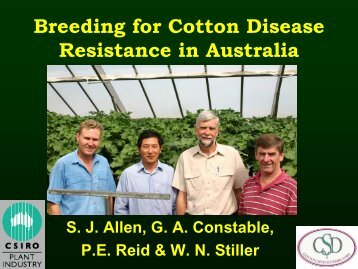 Breeding for Cotton Disease Resistance in Australia