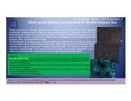 Dark ocean primary production in Mediterranean Sea - CNR