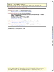 Comparison of shape encoding in primate dorsal and ... - CiteSeerX