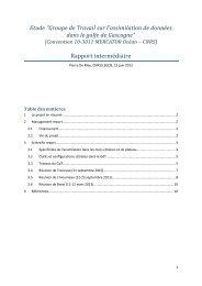Rapport intermédiaire - Mercator Océan