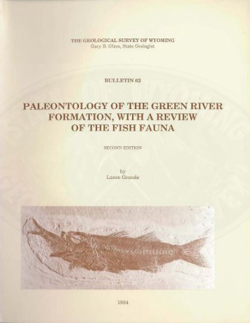 paleontology of the green river formation, with a review of the fish ...