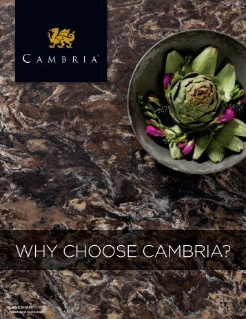 Download Our Top 10 Reasons (PDF) - Cambria
