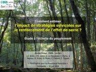 Impact de la gestion forestière sur les émissions de gaz à effet ... - Inra