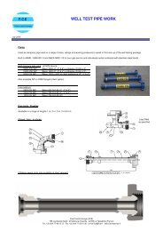 DS-welltest piping-0407.pdf - FCE