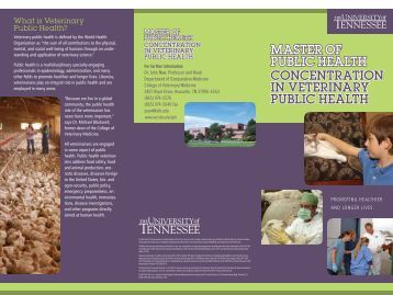 download the brochure - The University of Tennessee College of ...