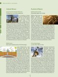 Download - Naturstrom - Page 4