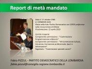 Report 2010-2012 - Fabio Pizzul
