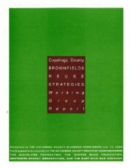 Brownfields Reuse Strategies Working Group Report - Cuyahoga ...