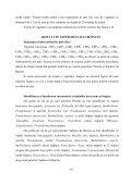 Studii privind bioremedierea solurilor poluate cu petrol folosind ... - Page 6