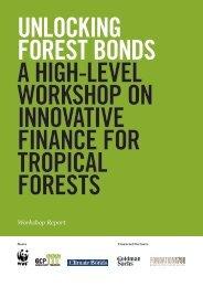 Workshop Report - Climate Bonds