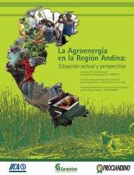 La Agroenergía en la Región Andina - Instituto Interamericano de ...