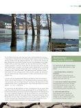 Neues von naturstrom Heft 2 (2007) STROM-HERKUNFTSNACHWEIS - Seite 5