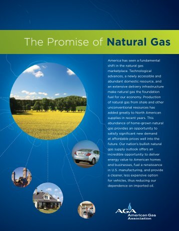 The Promise of Natural Gas - Energy Solutions Center