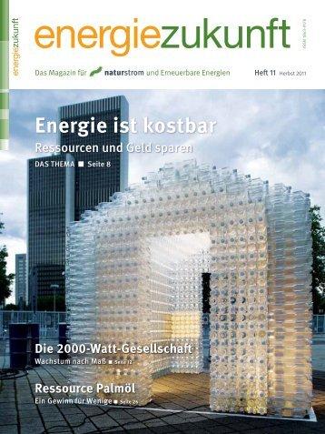 Energie ist kostbar - Naturstrom