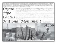 Organ Pipe Cactus National Monument AZ06