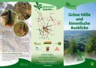 Grüne Hölle und himmlische Ausblicke - Naturpark Südeifel