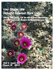 Low Water Use Drought Tolerant Plant List