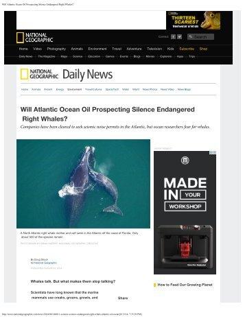 Will Atlantic Ocean Oil Prospecting Silence Endangered Right Whales