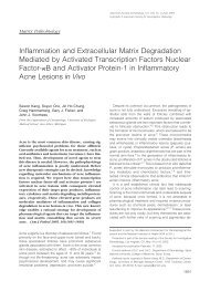 Inflammation and Extracellular Matrix Degradation Mediated by ...