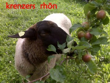 krenzers rhön - Land-Partie