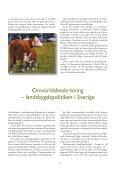 Landsbygdsprogram - Sundsvall - Page 5