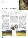 Das Lech-Rätsel - Naturpark Tiroler Lech - Seite 6