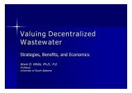 Valuing Decentralized Wastewater Strategies, Benefits, and ...