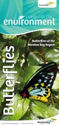 Butterflies Factsheet - Moreton Bay Regional Council