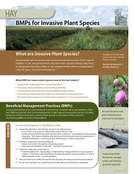 BMPs for Invasive Plant Species: Hay - Saskatchewan Forage Council
