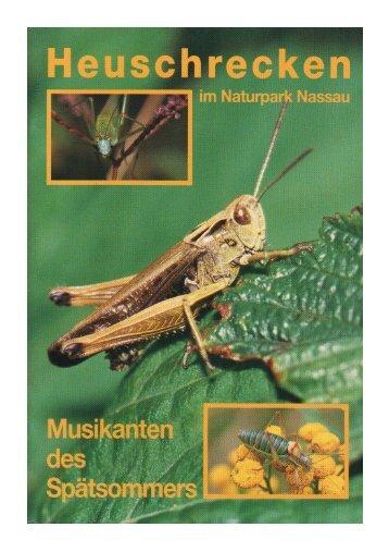 Musikanten des Spätsommers - Naturpark Nassau