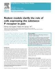 Rodent models clarify the role of cells expressing - Washington ...