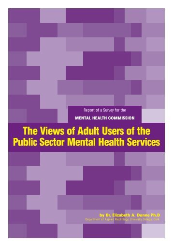 The Views of Adult Users of the Public Sector Mental Health Services