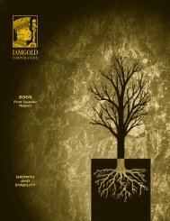 2005 - Iamgold