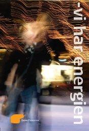 Om Energitjenesten - en rapport fra 2009