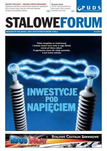 Polska energetyka na modernizacj´ i budow´ nowych mocy wyda w ...