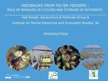 FEEDBACKS FROM FILTER FEEDERS :
